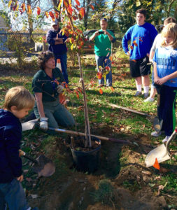 comm-news-tree-planting-t